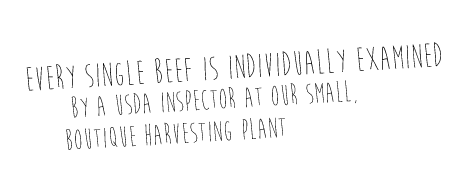 Every single beef is individually examined by a USDA inspector at our small, boutique harvesting plant